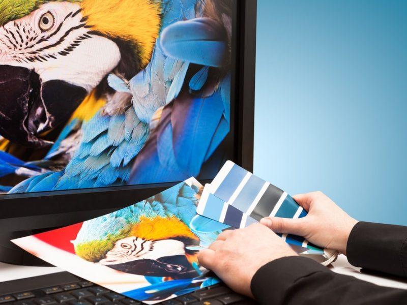 Wizytówki, katalogi, ulotki – jak je poprawnie zaprojektować?