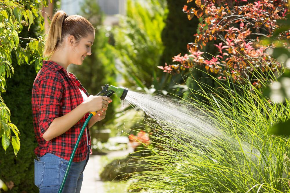 Jak zorganizować sobie podlewanie ogrodu?
